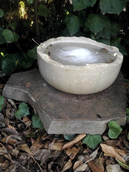 frozen limestone bowl