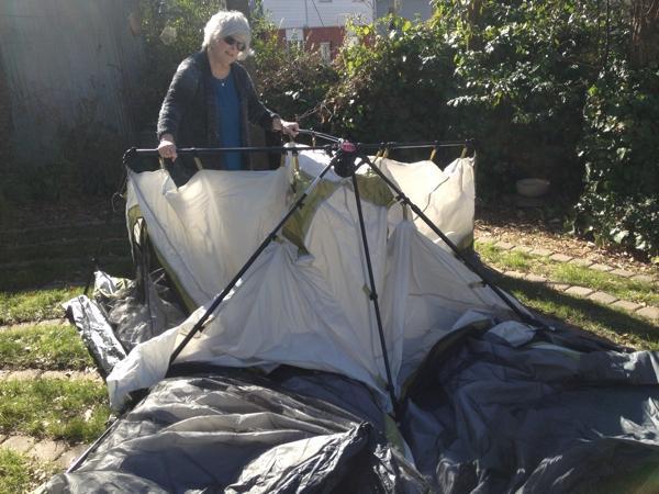 Instant Tent 10